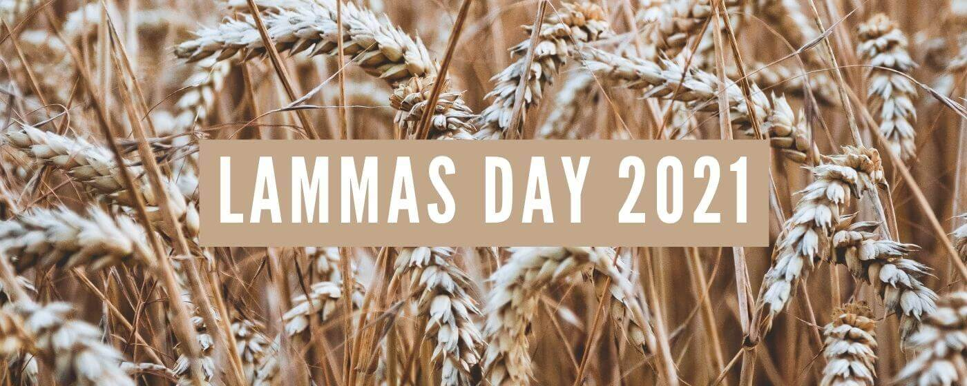 A landscape image of organic wheat which is used in the Bread Ahead bakeries. A line of text in the image says 'Lammas day 2021' which is an online baking class.